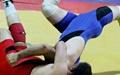 تیم کشتی فرنگی ایران قهرمان مسابقات پیشکسوتان جهان شد