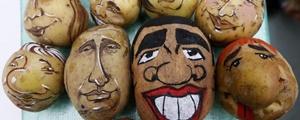 عکس روز: سیبزمینیها