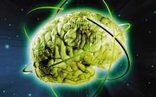برقراری اولین ارتباط تلهپاتی مغز به مغز در جهان