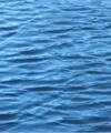 راز مرگ ماهیگیر گمشده در اعماق دریا