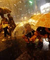 عکس روز: معترضان زیر چتر