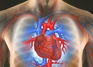 بیماریهای قلبی - عروقی