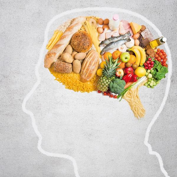 خوراک مغز
