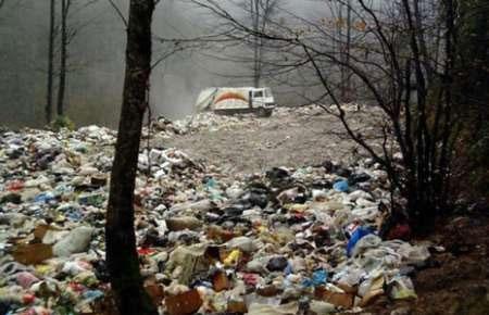 شیرابه زباله سبب خشکیدگی برخی گیاهان در جنگلهای شمال شده است