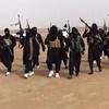 دهها جنگجوی داعش وارد خاک عربستان سعودی شدند