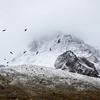 بارش برف در ۲۰ استان کشور