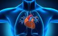 هشدار درباره روند افزایشی بیماریهای قلبی