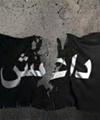 آمریکا آماده حضور زمینی در عراق میشود
