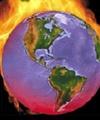 ۲۰ درصد عامل گرم شدن کره زمین ناشی از تخریب جنگلهاست