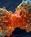 تحول در تحقیقات سرطان توسط دختر ۸ ساله!