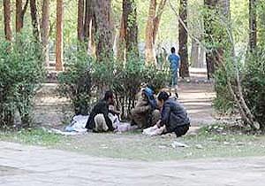 گزارش شبگردی مسئولان شهری در حیاط خلوت معتادان