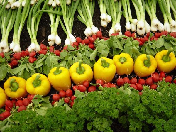 سبزیجات را با روش مناسب طبخ کنید