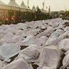 آمار  خبرگزاری فرانسه از کشتهشدگان فاجعه منا به تفکیک کشورها