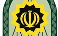 تعقیب ۱۲۵ مجرم ایرانی در خارج