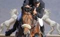 داود پوررضایی قهرمان مسابقات پرش با اسب بزرگسالان کشور شد