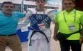 بازیهای آسیا و اقیانوسیه ناشنوایان؛ کسب ۲ طلا و ۱ نقره توسط تکواندوکاران کشورمان