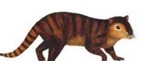 کشف جاندارانی جانسختتر از دایناسورها