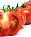 آسیب مفاصل و معده با مصرف زیاد گوجهفرنگی