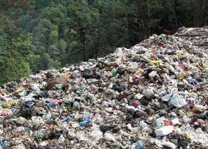 انتقاد رئیس انجمن جنگلبانی از تخلیه زباله درجنگلهای شمال