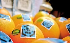 محصولات اسرائیلی که در ایرلند با این شعار فروش می رود: جنگ از اینجا آغاز شده است.