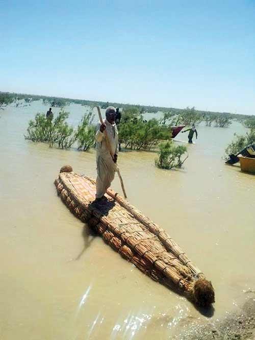 آثار مخرب جنگ در محیطزیست با دیپلماسی کاهش مییابد