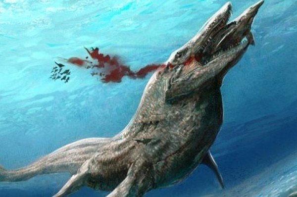 کشف راز نجات آبزیان کوچک پس از انقراض بزرگ