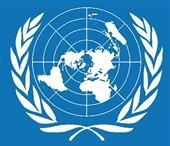 هشدار سازمان ملل در مورد پیامدهای حادثه سقوط جنگنده روسیه