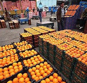 مگس مدیترانه با میوههای قاچاق به ایران آمد