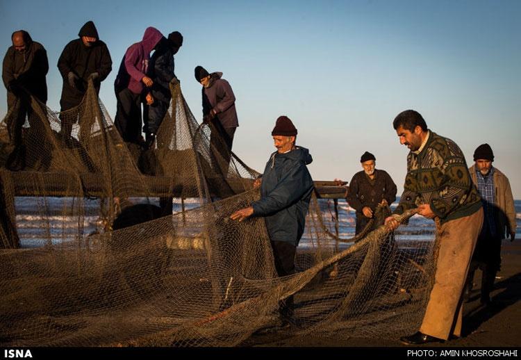 گزارش تصویری | صید ماهی در سواحل دریای خزر