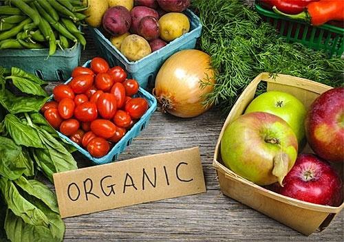 افزایش تولید محصولات ارگانیک نیاز به حمایت دولت دارد
