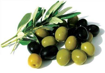 هشدار نسبت به مصرف زیتون سیاه و روغن زیتون تصفیه شده