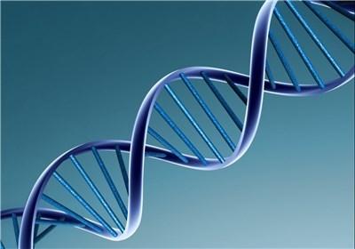 یک آمار شگفتانگیز درباره DNA