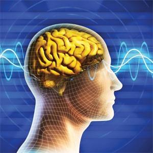 ویروسها در مغز ما چه میکنند؟