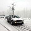 بارش برف و ترافیک سنگین در جاده کرج - چالوس