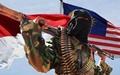 یک گروه فعال تروریستی مرتبط با داعش در مالزی متلاشی شد