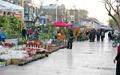 پیاده راه ۱۷ شهریور، میزبان نمایشگاههای مختلف در سال ۹۴