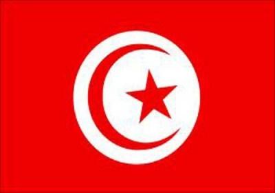 تصویری از خودروی شخصی رئیس جمهور تونس ؛ پژو ۲۰۶ صندوقدار ساخت ایران