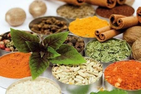 مناطق حفاظت شده گیاهان دارویی در کشور ایجاد میشود