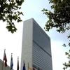 آمادگی سازمان ملل برای افزایش همکاری با تهران در زمینه مدیریت بحران