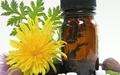 داروی گیاهی برای دیابت نوع ۲