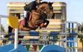 سبحان یوسفی قهرمان مسابقه پرش با اسب بینالمللی CSI-B نوجوانان شد