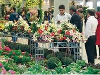 نمایشگاه بهاره بوستان گفتگو بهاره میزبانی نمایشگاه گل و گیاه بهاره تهران از ۲۸۰ شرکت