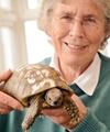 بازگشت لاکپشت ۱۰۹ ساله به خانه