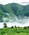 اجرای کمربند سبز حفاظت از اراضی ملی