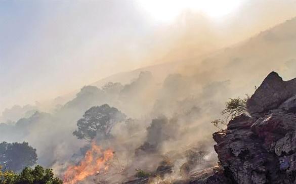 هزار هکتار از منطقه حفاظتشده بختگان در آتش سوخت
