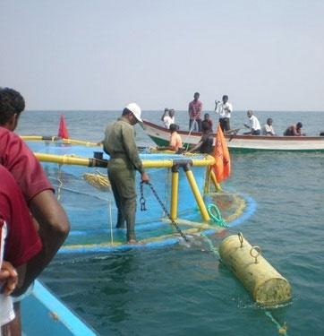 پرورش ماهی در قفس در دریای خزر مغایر با موازین زیستمحیطی است