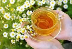 خانمها چای بابونه بنوشند