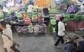 خرید روزانه نیم میلیون تهرانی از میادین میوه و ترهبار