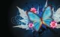 صدای پروانهها
