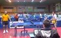پینگ پنگبازان برتر ورزشکاران پیوند اعضای کشور معرفی شدند
